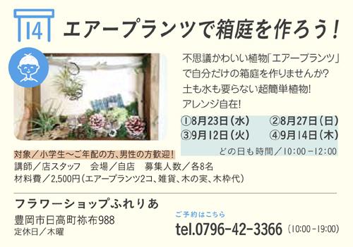エアープランツで箱庭を作ろう!image1