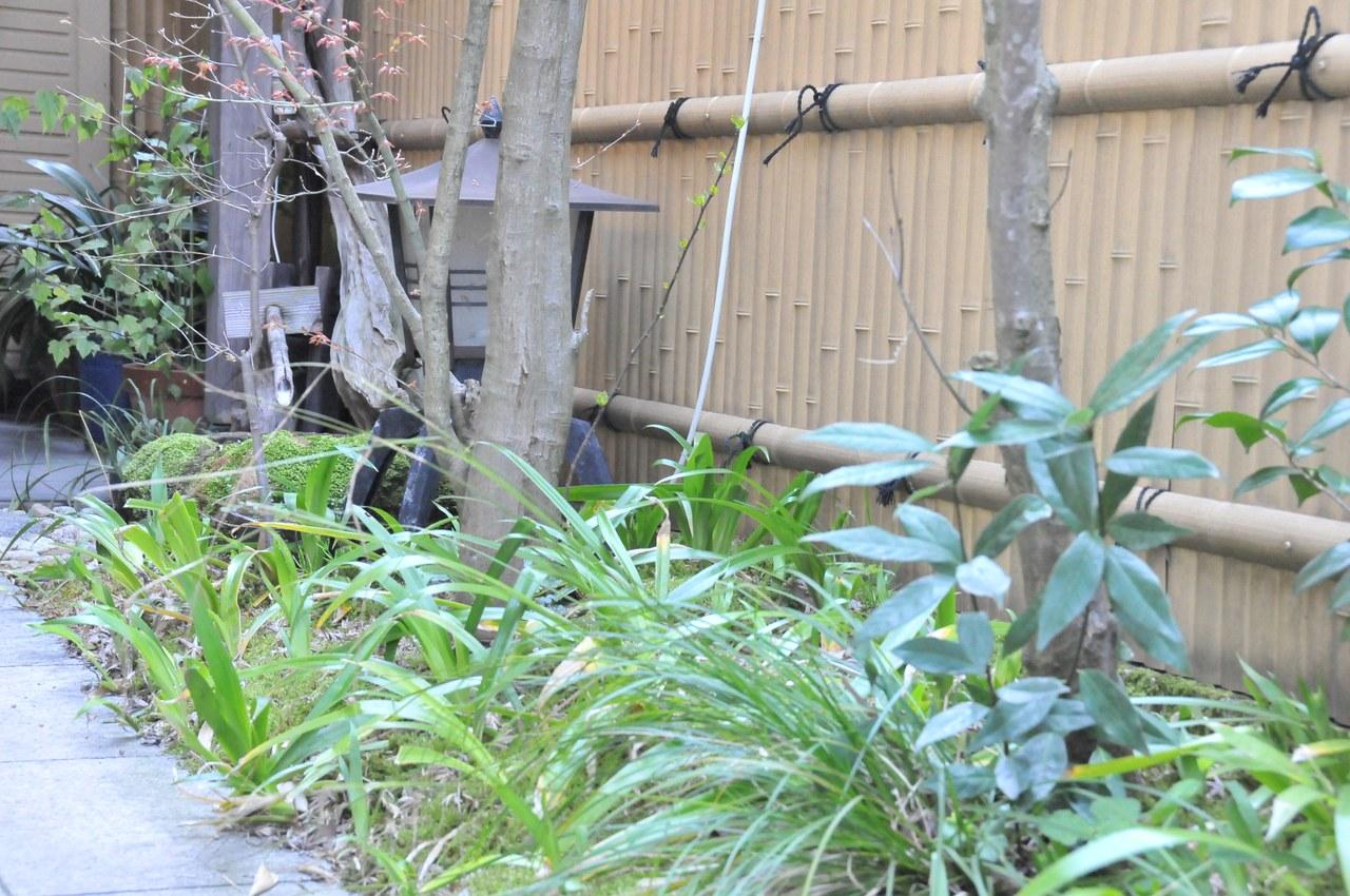 京懐石 音羽屋image3